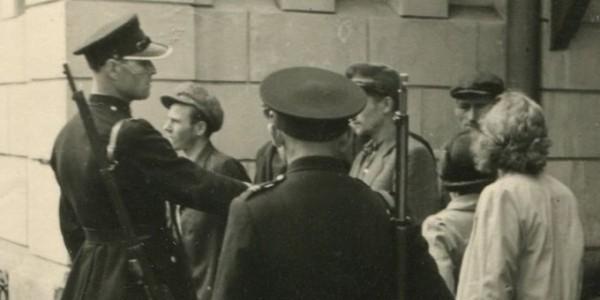 The Polish Police Force