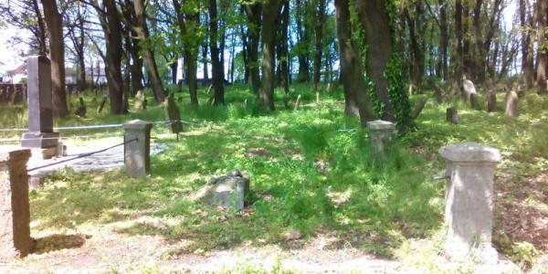 Cmentarz żydowski w Brzesku
