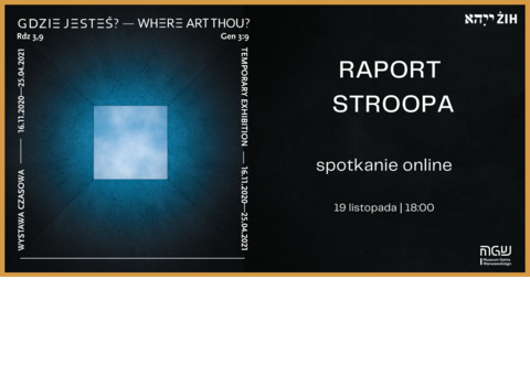 2020-11-19-raport-stroopa.png