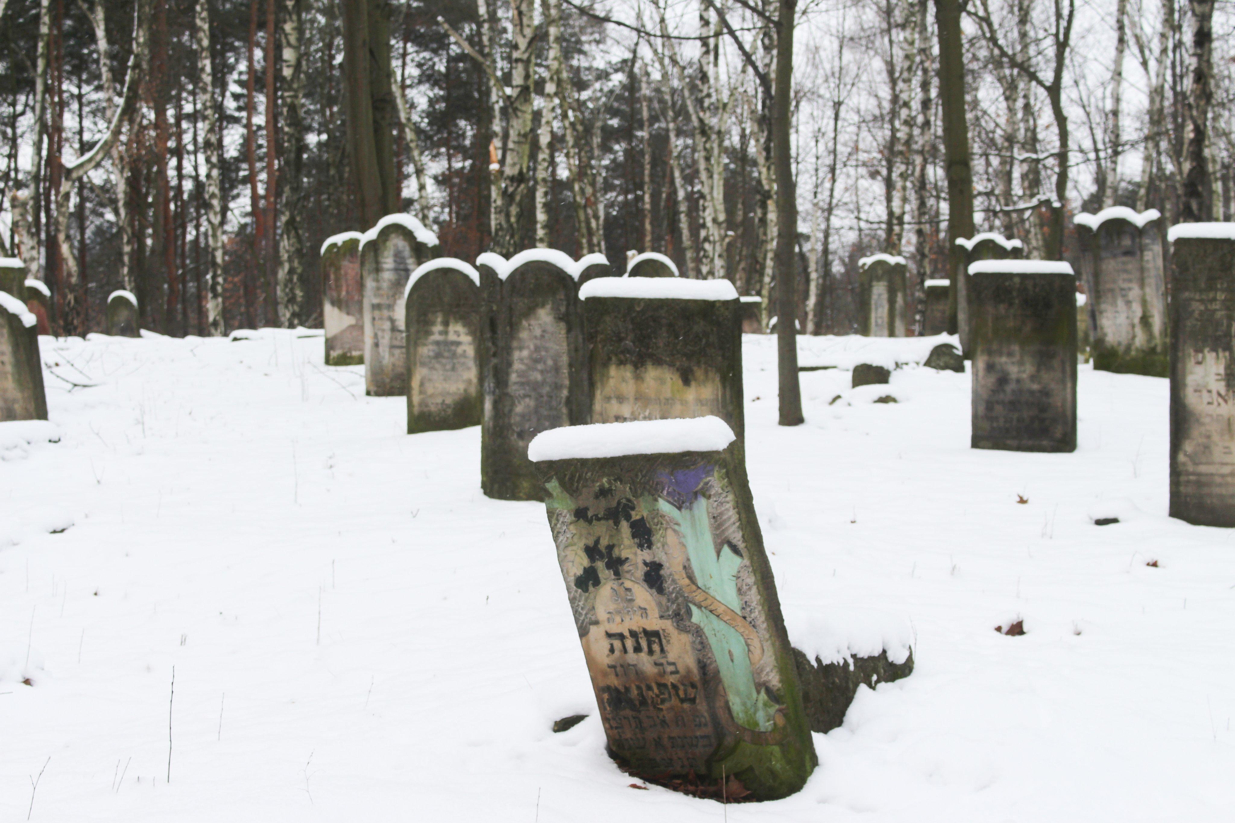 2021-01-17-cmentarz-brudnowski.jpg